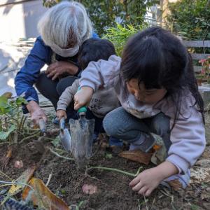 家の庭で芋ほり体験